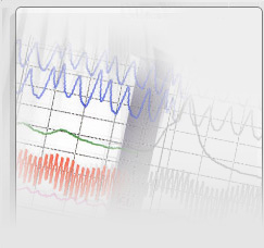 Polygraph or Lie Detection Tests